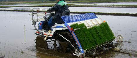 Agricultural Technology Eu Business In Japan